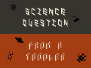 Science Question from a Toddler